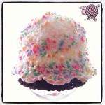 Crochet Cupcake Newborn Beanie