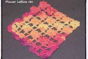 Flower Lattice Corner to Corner (c2c) - Dearest Debi Patterns