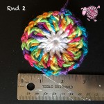 Butterfly Garden Octagon Round 2 - Dearest Debi Patterns