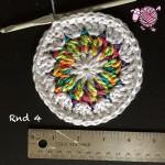 Butterfly Garden Octagon Round 4 - Dearest Debi Patterns